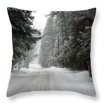 Mountain Trail Throw Pillow