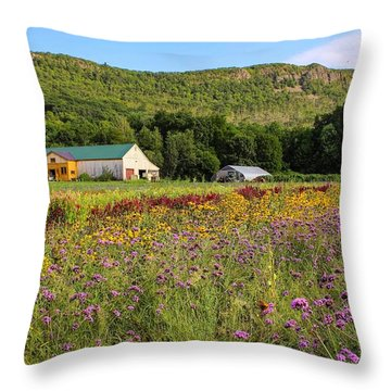 Mountain View Farm Easthampton Throw Pillow