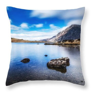 Mountain View Throw Pillow