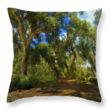 Throw Pillow featuring the photograph Mountain Way by Mark Blauhoefer