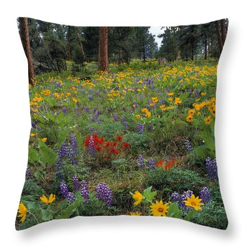 Mountain Wildflowers Throw Pillow by Leland D Howard