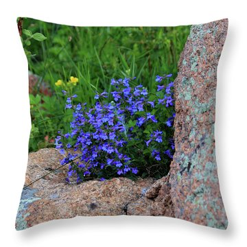 Throw Pillow featuring the photograph Mountain Wildflowers by Shane Bechler