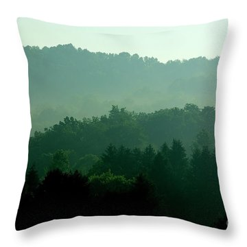 Mountains And Mist Throw Pillow by Thomas R Fletcher