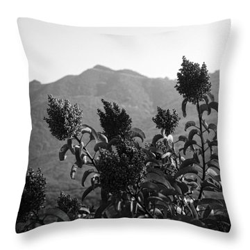 Mountains And Vegetation Throw Pillow