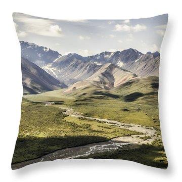 Mountains In Denali National Park Throw Pillow