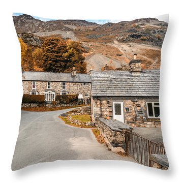 Mountains In The Back Yard Throw Pillow