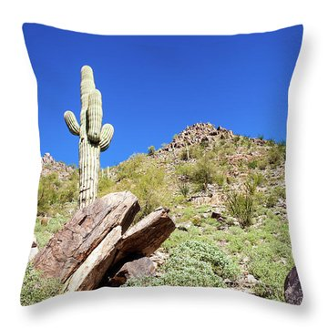 Mountainside Cactus 2 Throw Pillow