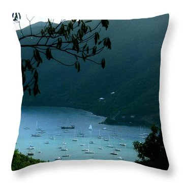 Mountainside Coral Bay Throw Pillow by Robert Nickologianis