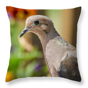 Mourning Dove And Flowers Throw Pillow
