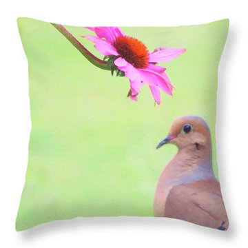 Throw Pillow featuring the photograph Mourning Dove by Sue Collura