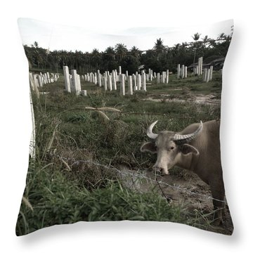 Mourning In The Palm-tree Graveyard Throw Pillow