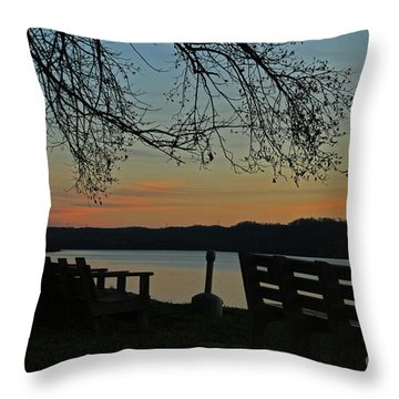 Mourning Silence Throw Pillow