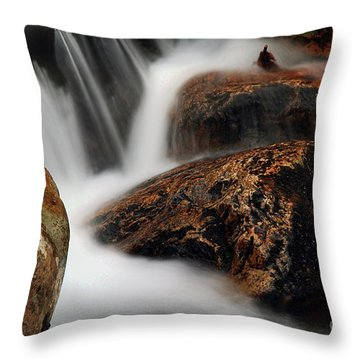 Throw Pillow featuring the photograph Moving Along by Darren Fisher