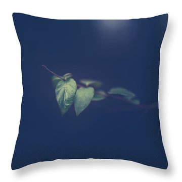 Throw Pillow featuring the photograph Moving In The Shadows by Shane Holsclaw