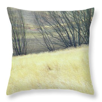 Moving On From Virginia Dale Throw Pillow by Lenore Senior