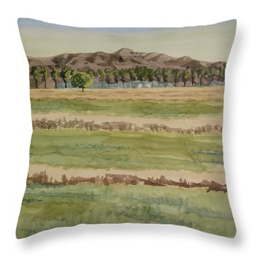 Mown Hay Throw Pillow by Bethany Lee