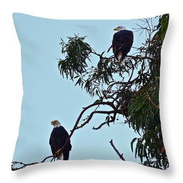 Mr. And Mrs. Bald Throw Pillow