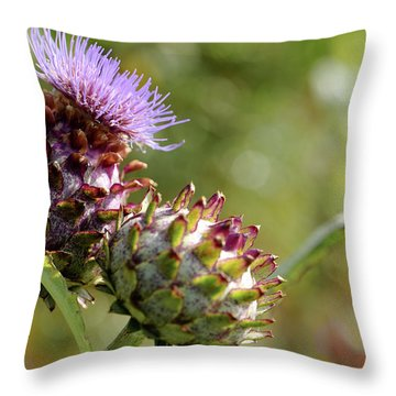 Mr And Mrs Thistle  Throw Pillow by Jeremy Lavender Photography