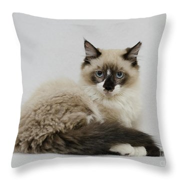 Mr. Atkin Throw Pillow