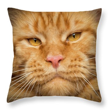 Throw Pillow featuring the photograph Mr. Big Mouth by Robert Sijka