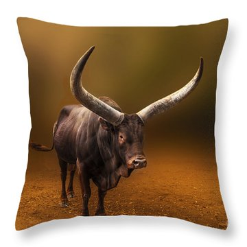 Mr. Bull From Africa Throw Pillow by Charuhas Images