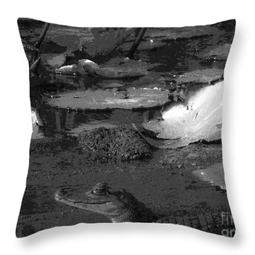 Mr. Caiman Throw Pillow