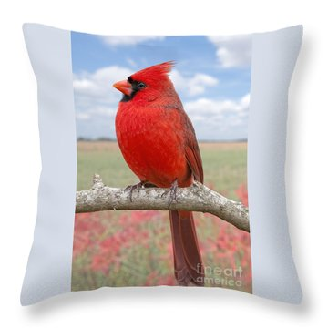 Mr. Cheerful Throw Pillow