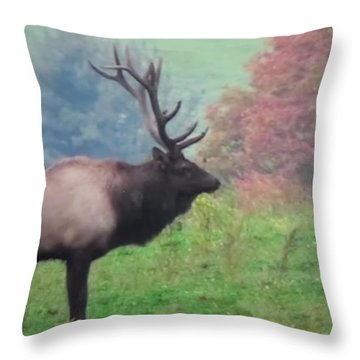 Mr Elk Enjoying The Autumn Throw Pillow by Jeanette Oberholtzer