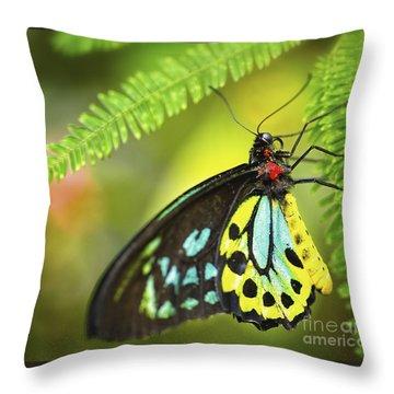 Mr. Richmond Birdwing Throw Pillow