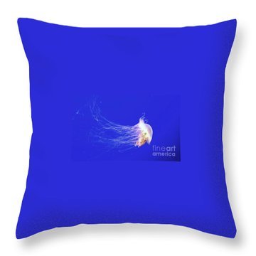 Throw Pillow featuring the photograph Mr.jelly by Vanessa Palomino