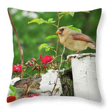 Mrs. Cardinal Throw Pillow