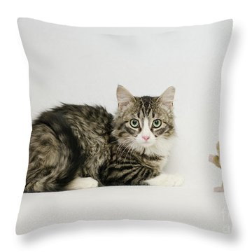 Ms Alexia And Mouse Throw Pillow