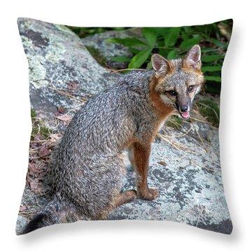 Ms Pin Throw Pillow