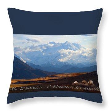 Mt. Denali National Park Throw Pillow