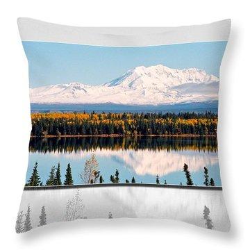 Throw Pillow featuring the photograph Mt. Drum - Alaska by Juergen Weiss