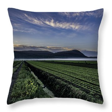 Dawn And Fog Over The Farmland Throw Pillow
