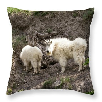 Mt Goat Outing Throw Pillow