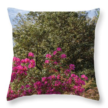 Throw Pillow featuring the photograph Mt Hamilton Azaleas 5 by Chris Scroggins