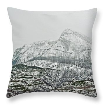 Throw Pillow featuring the photograph Mt. Ida by Michael Dohnalek