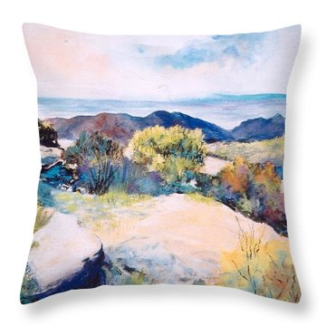 Throw Pillow featuring the painting Mt Lemmon View by M Diane Bonaparte