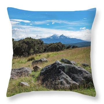 Throw Pillow featuring the photograph Mt Ruapehu View by Gary Eason