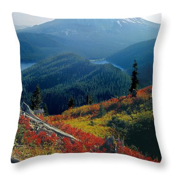1m4903-mt. St. Helens 1975  Throw Pillow