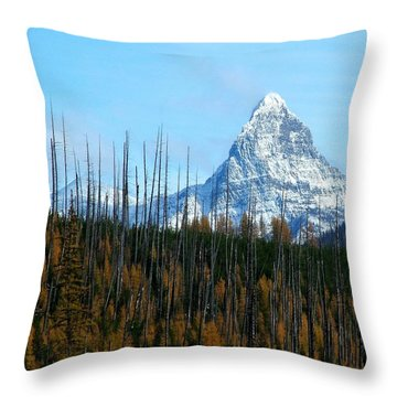 Mt St Nicolas After The Fire Throw Pillow
