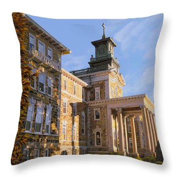 New Jersey Paintings Throw Pillows