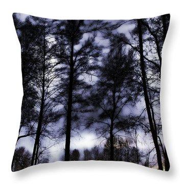 Mt Vernon At Dusk Throw Pillow