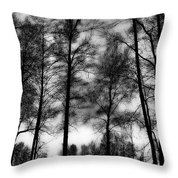 Mt Vernon Landscape Throw Pillow