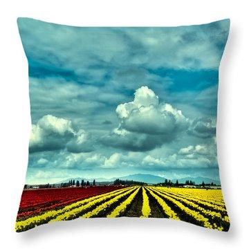 Mt Vernon Tulip Farm Throw Pillow