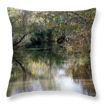 Muckalee Creek Throw Pillow by Jerry Battle
