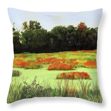 Mud Lake Marsh Throw Pillow by Lynne Reichhart