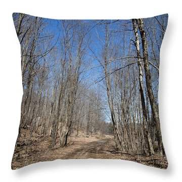 Throw Pillow featuring the photograph Mud Season In The Adirondacks by David Patterson